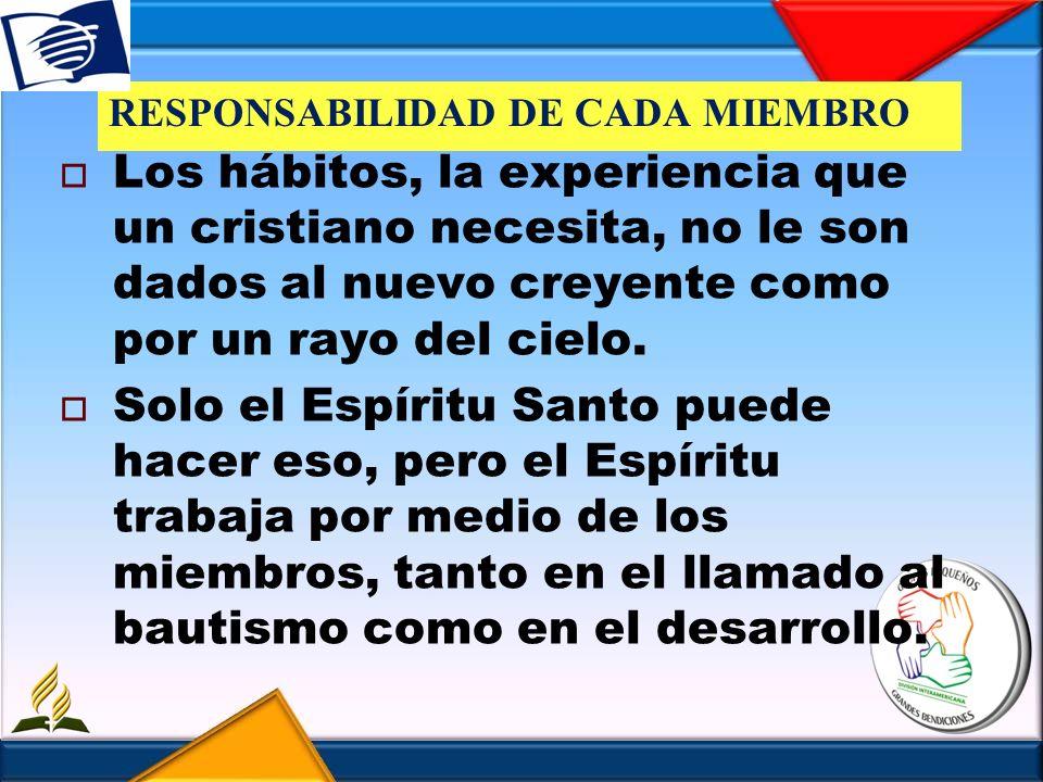 RESPONSABILIDAD DE CADA MIEMBRO