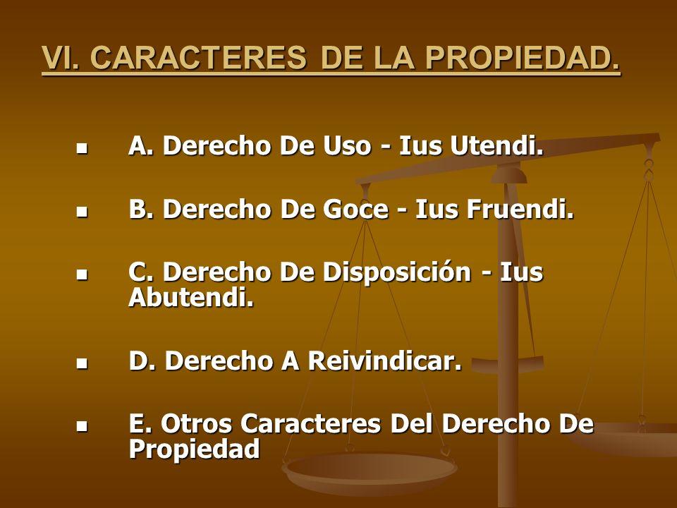 VI. CARACTERES DE LA PROPIEDAD.