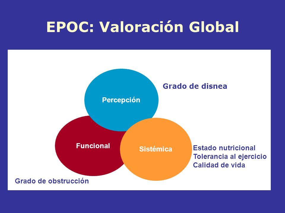 EPOC: Valoración Global
