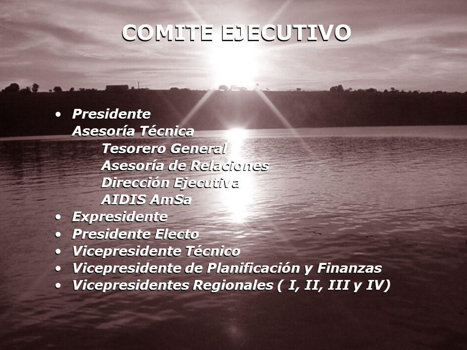 COMITE EJECUTIVO Presidente Asesoría Técnica Tesorero General