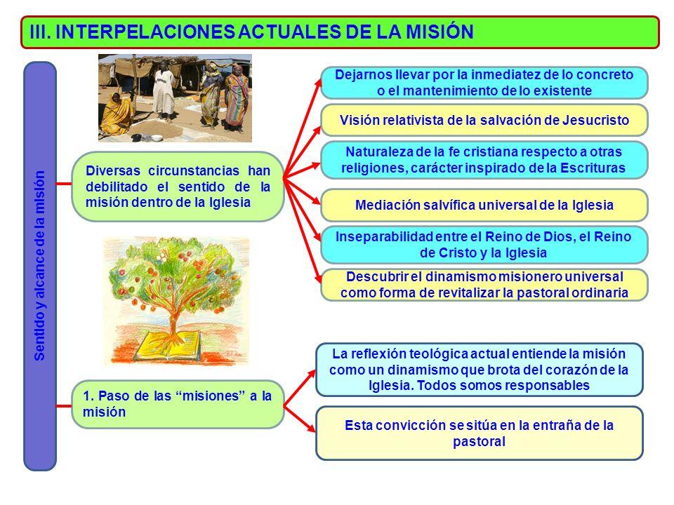 III. INTERPELACIONES ACTUALES DE LA MISIÓN