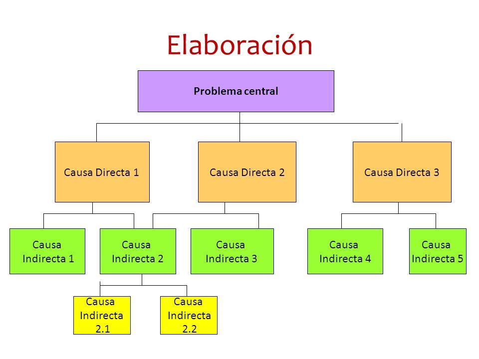Elaboración Problema central Causa Directa 1 Causa Directa 2