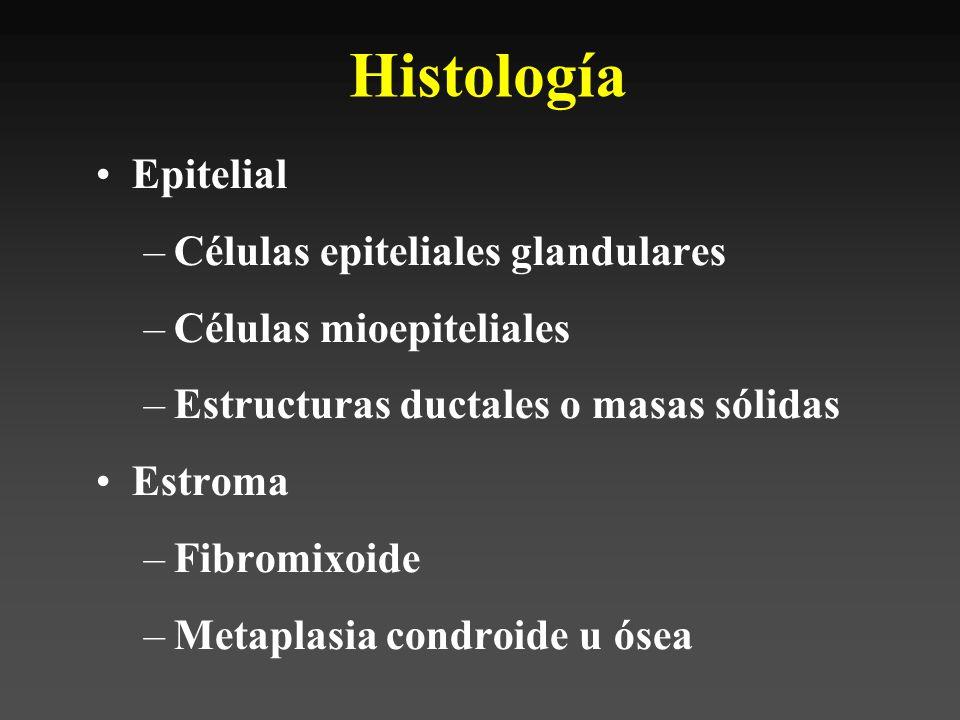 Histología Epitelial Células epiteliales glandulares