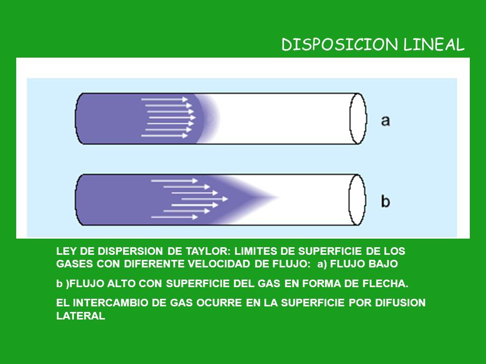 DISPOSICION LINEALLEY DE DISPERSION DE TAYLOR: LIMITES DE SUPERFICIE DE LOS GASES CON DIFERENTE VELOCIDAD DE FLUJO: a) FLUJO BAJO.