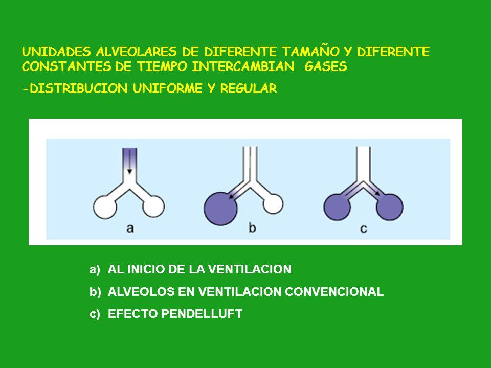 UNIDADES ALVEOLARES DE DIFERENTE TAMAÑO Y DIFERENTE CONSTANTES DE TIEMPO INTERCAMBIAN GASES