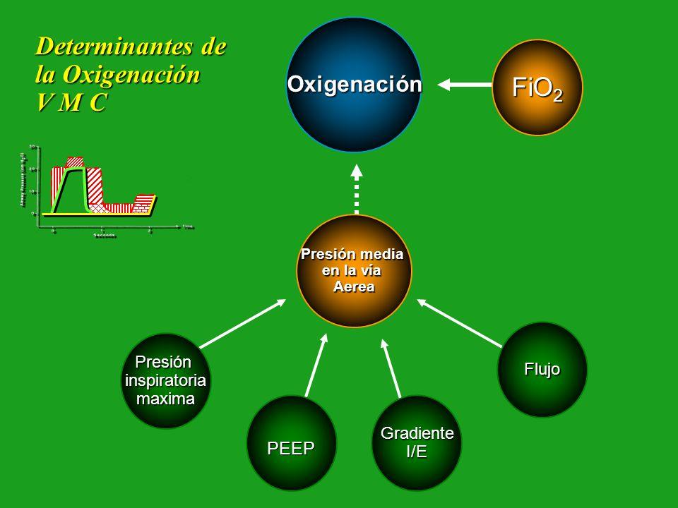 Determinantes de la Oxigenación V M C FiO2