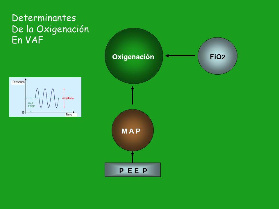 Determinantes De la Oxigenación En VAF Oxigenación FiO2 M A P P E E P