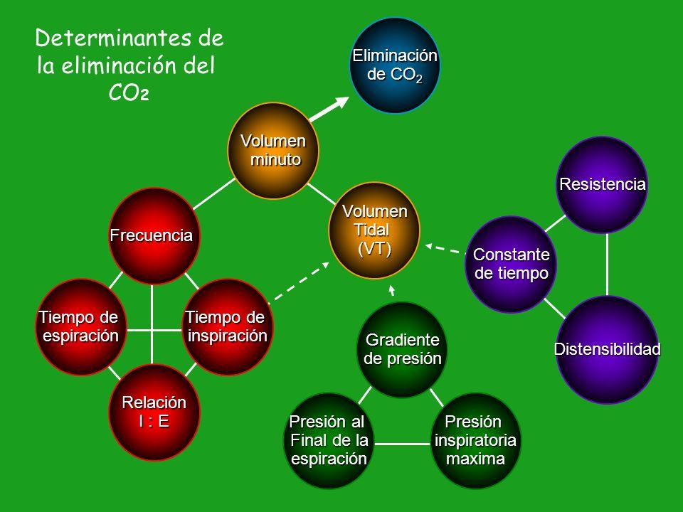 Determinantes de la eliminación del CO2 Eliminación de CO2 Volumen