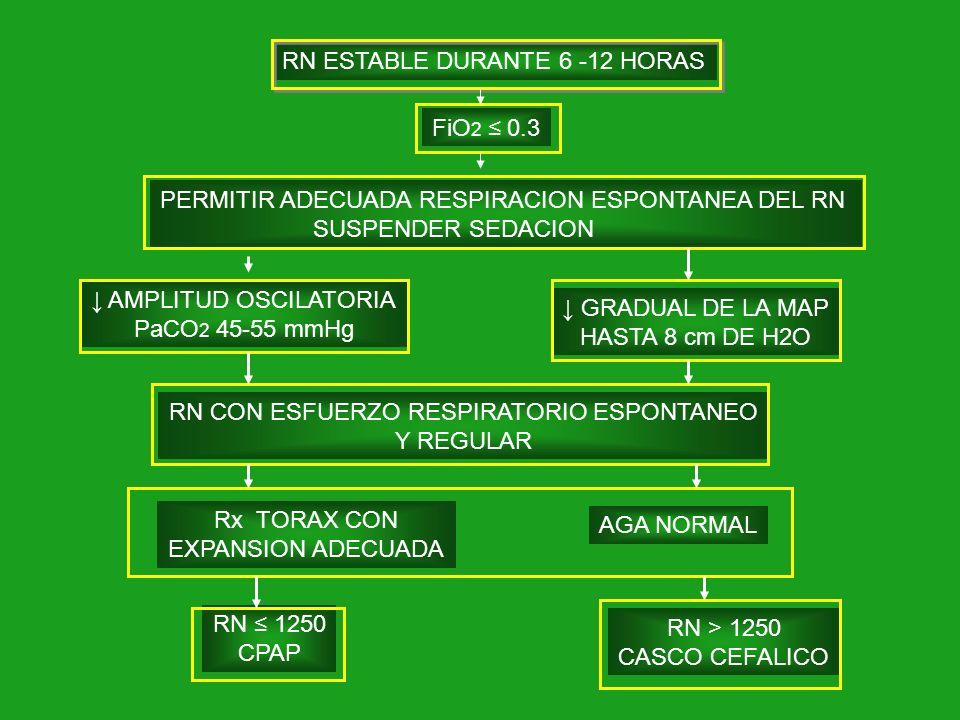RN ESTABLE DURANTE 6 -12 HORAS