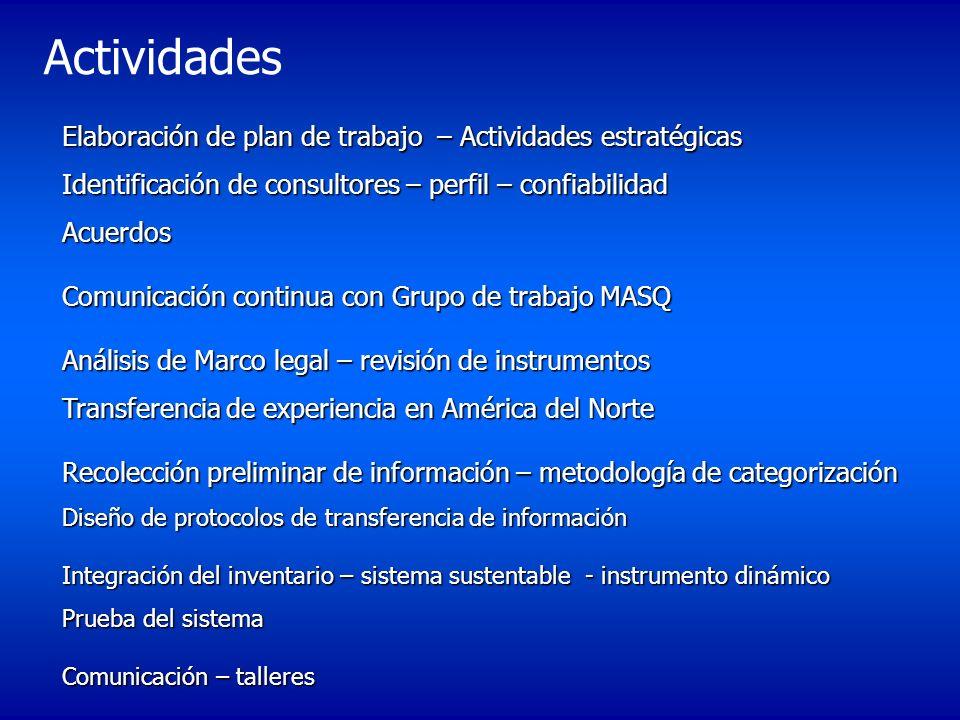 Actividades Elaboración de plan de trabajo – Actividades estratégicas Identificación de consultores – perfil – confiabilidad Acuerdos.