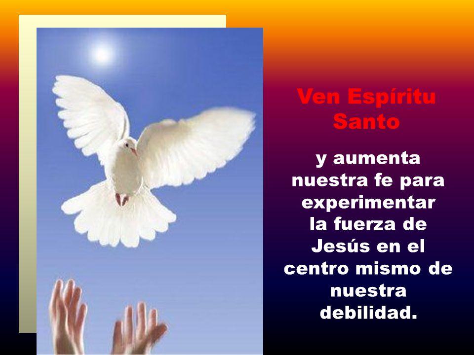 Ven Espíritu Santo y aumenta nuestra fe para experimentar la fuerza de Jesús en el centro mismo de nuestra debilidad.