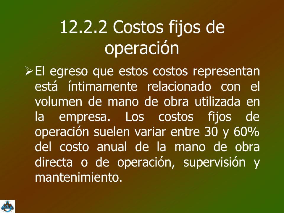 12.2.2 Costos fijos de operación