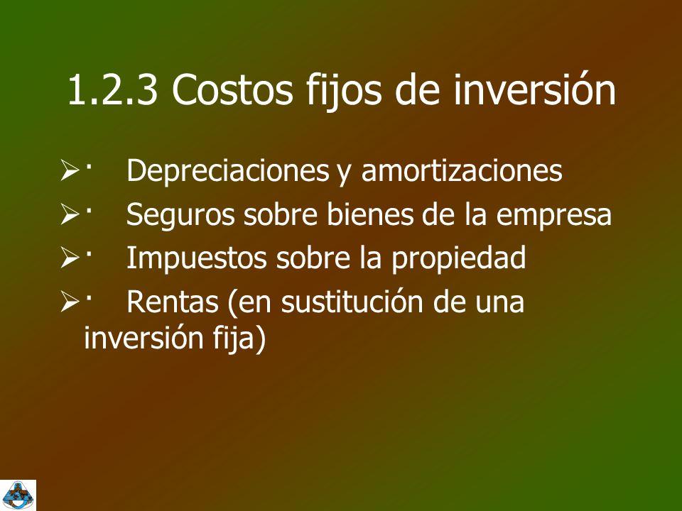 1.2.3 Costos fijos de inversión
