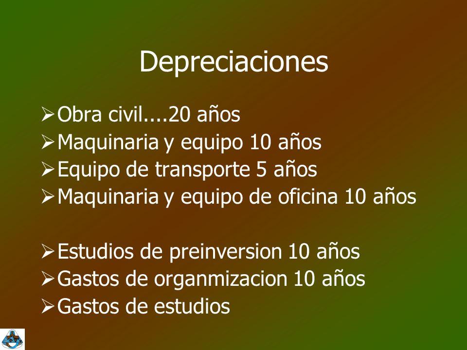 Depreciaciones Obra civil....20 años Maquinaria y equipo 10 años