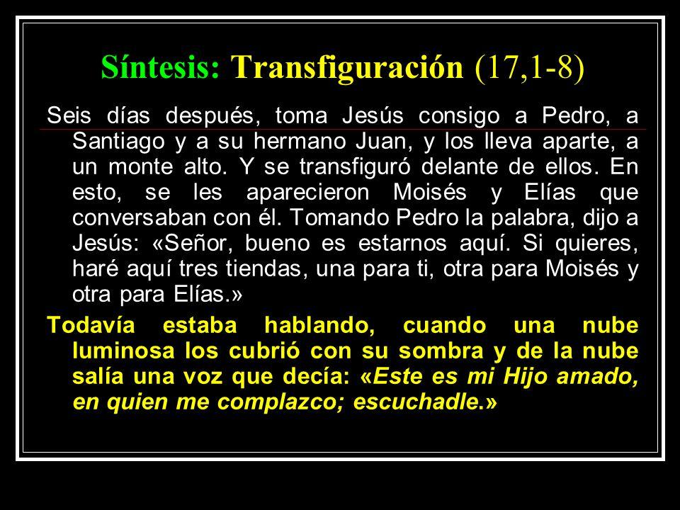 Síntesis: Transfiguración (17,1-8)