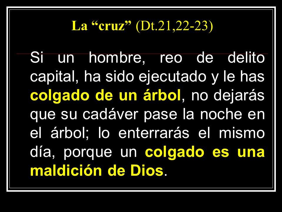La cruz (Dt.21,22-23)