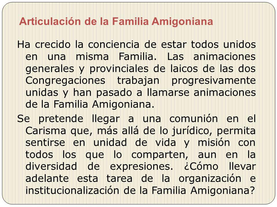 Articulación de la Familia Amigoniana