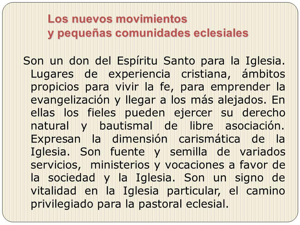 Los nuevos movimientos y pequeñas comunidades eclesiales