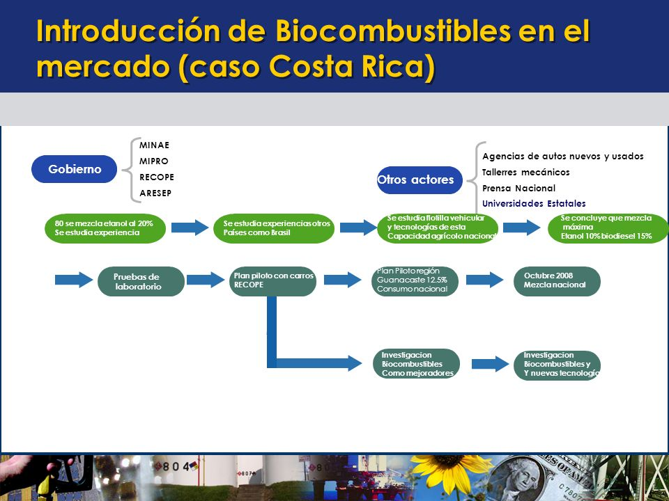 Introducción de Biocombustibles en el mercado (caso Costa Rica)