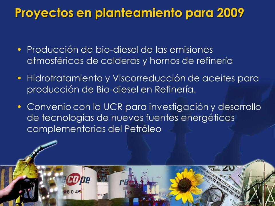 Proyectos en planteamiento para 2009