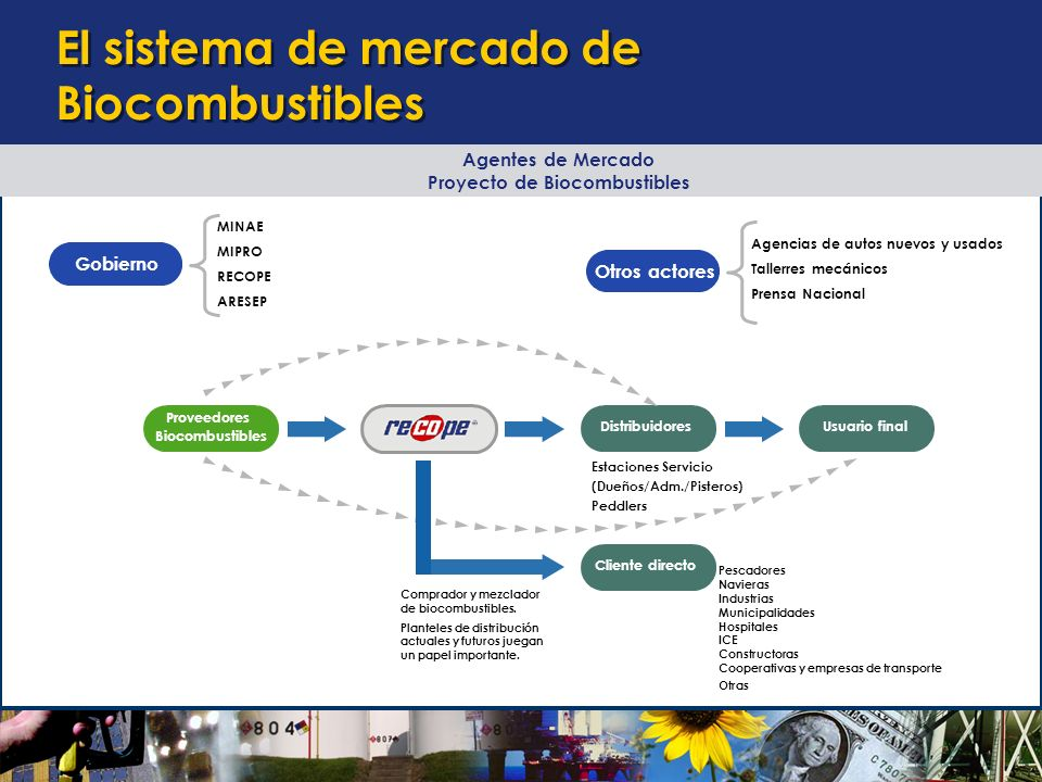 El sistema de mercado de Biocombustibles