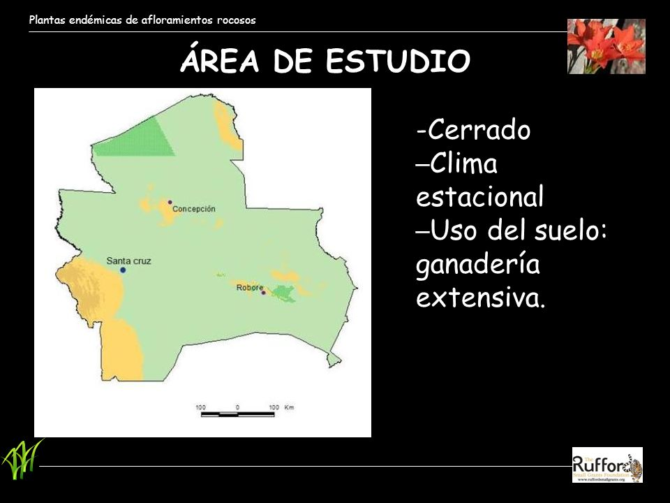 ÁREA DE ESTUDIO -Cerrado Clima estacional