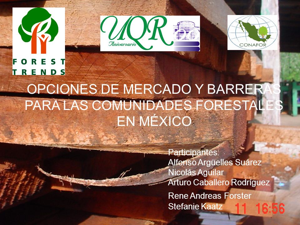 OPCIONES DE MERCADO Y BARRERAS PARA LAS COMUNIDADES FORESTALES EN MÉXICO