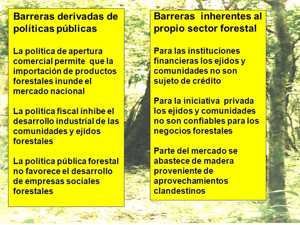 Barreras derivadas de políticas públicas La política de apertura comercial permite que la importación de productos forestales inunde el mercado nacional La política fiscal inhibe el desarrollo industrial de las comunidades y ejidos forestales La política pública forestal no favorece el desarrollo de empresas sociales forestales
