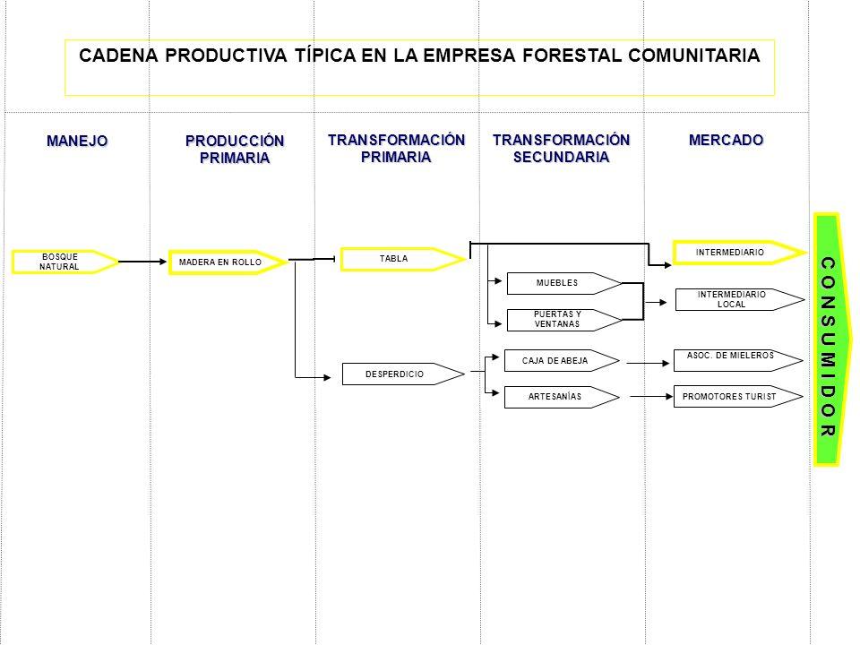 CADENA PRODUCTIVA TÍPICA EN LA EMPRESA FORESTAL COMUNITARIA