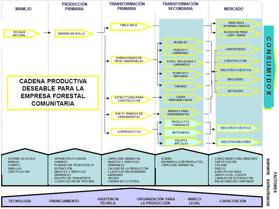 CADENA PRODUCTIVA DESEABLE PARA LA EMPRESA FORESTAL COMUNITARIA