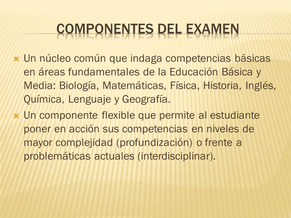COMPONENTES DEL EXAMEN