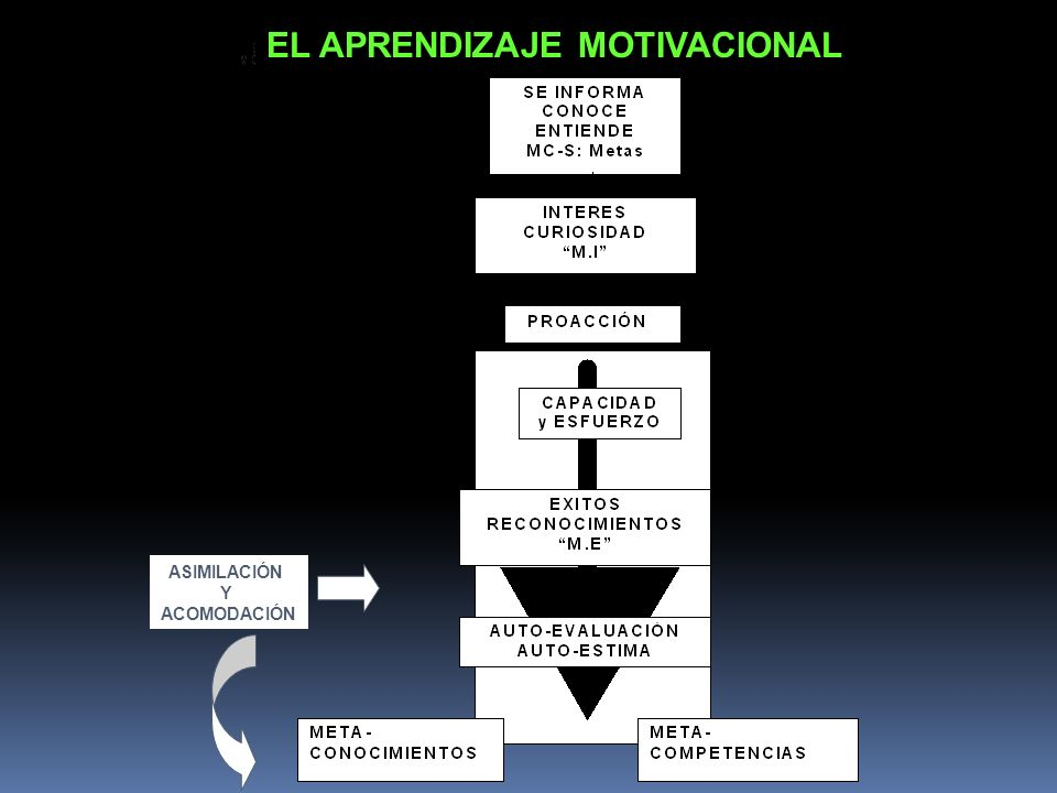 EL APRENDIZAJE MOTIVACIONAL