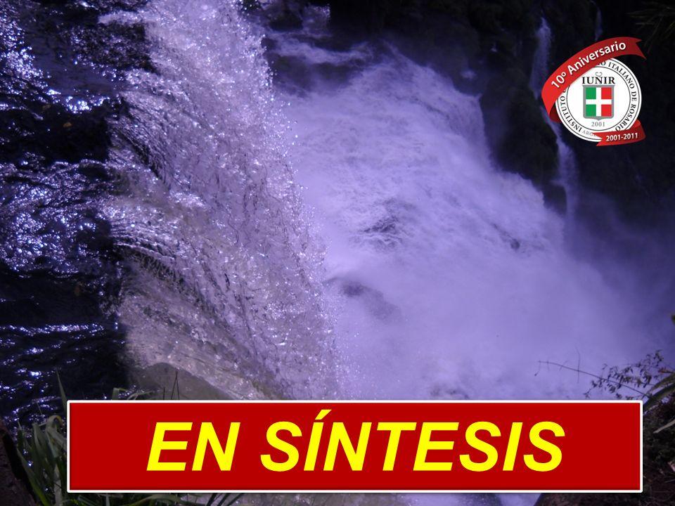 EN SÍNTESIS www.iunir.edu.ar m.a.s. 2011