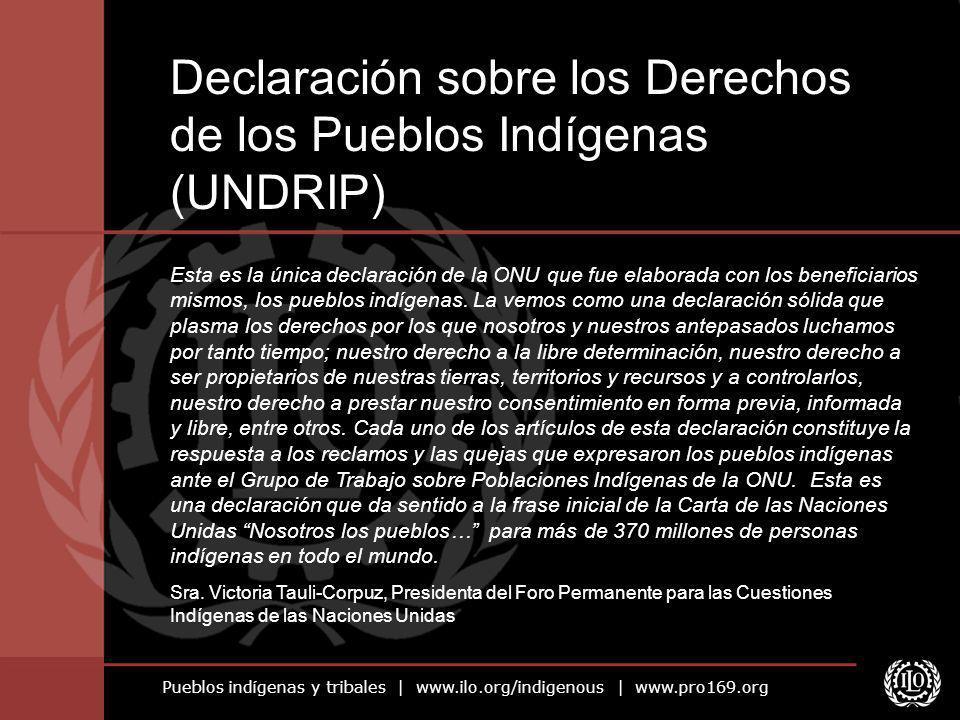 Declaración sobre los Derechos de los Pueblos Indígenas (UNDRIP)