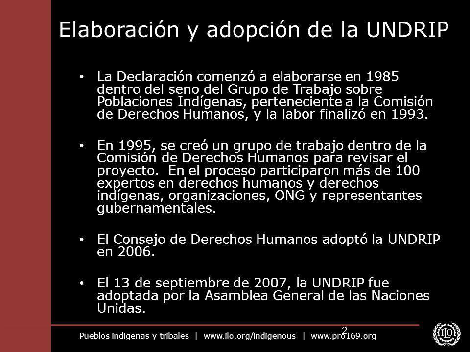 Elaboración y adopción de la UNDRIP