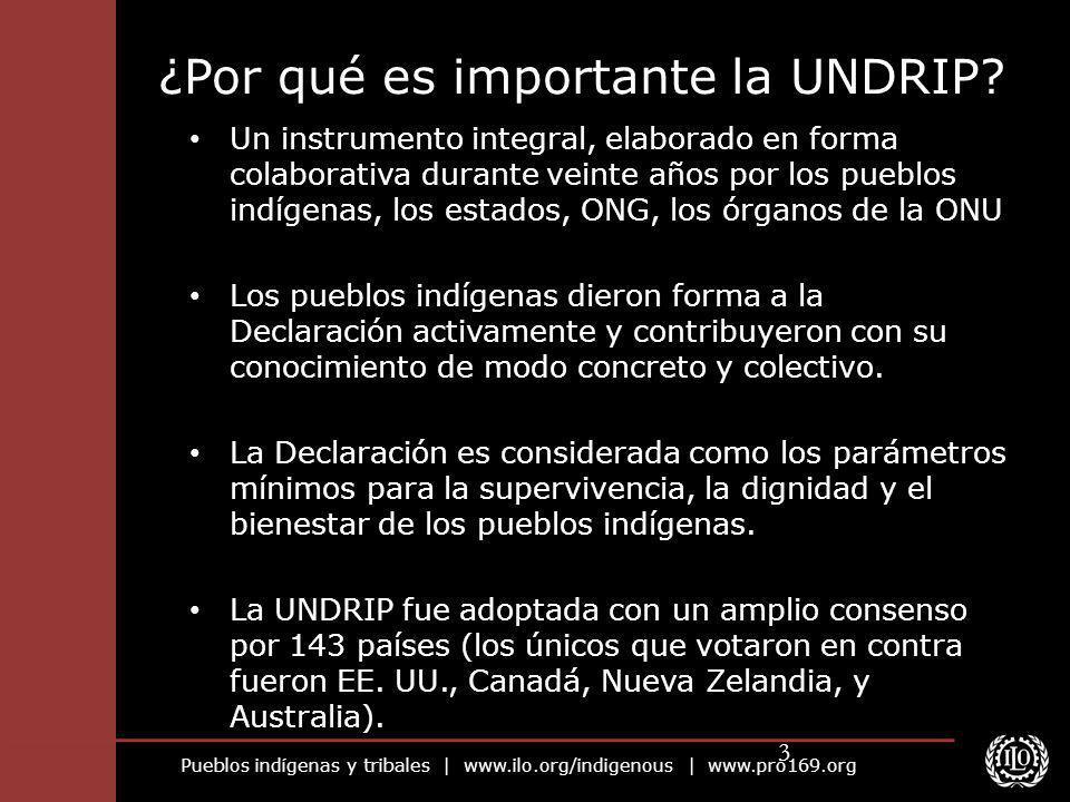 ¿Por qué es importante la UNDRIP