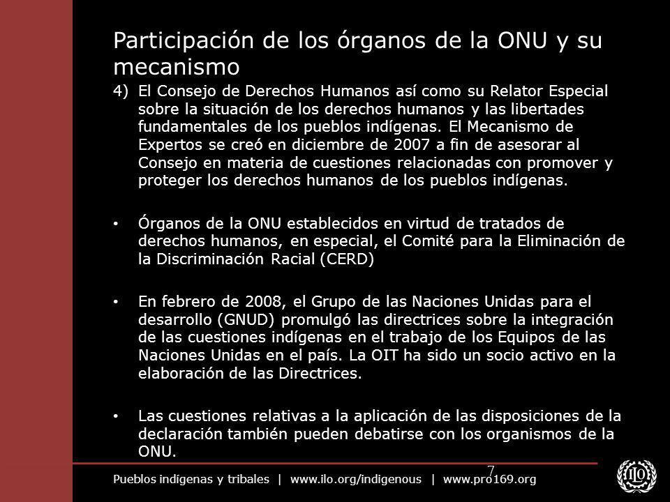 Participación de los órganos de la ONU y su mecanismo