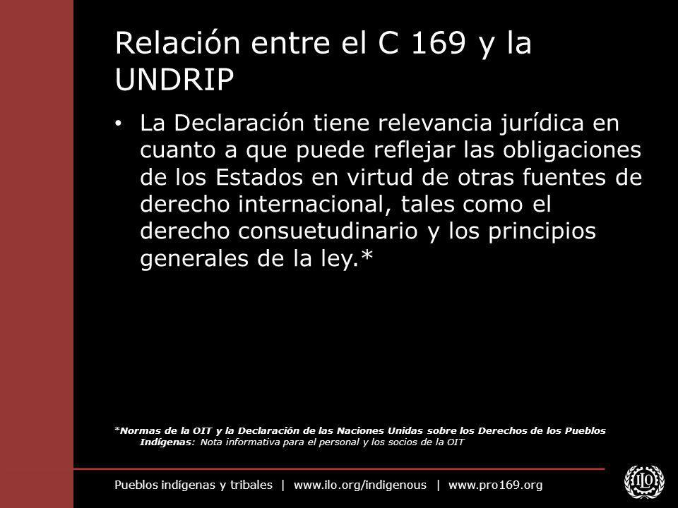Relación entre el C 169 y la UNDRIP