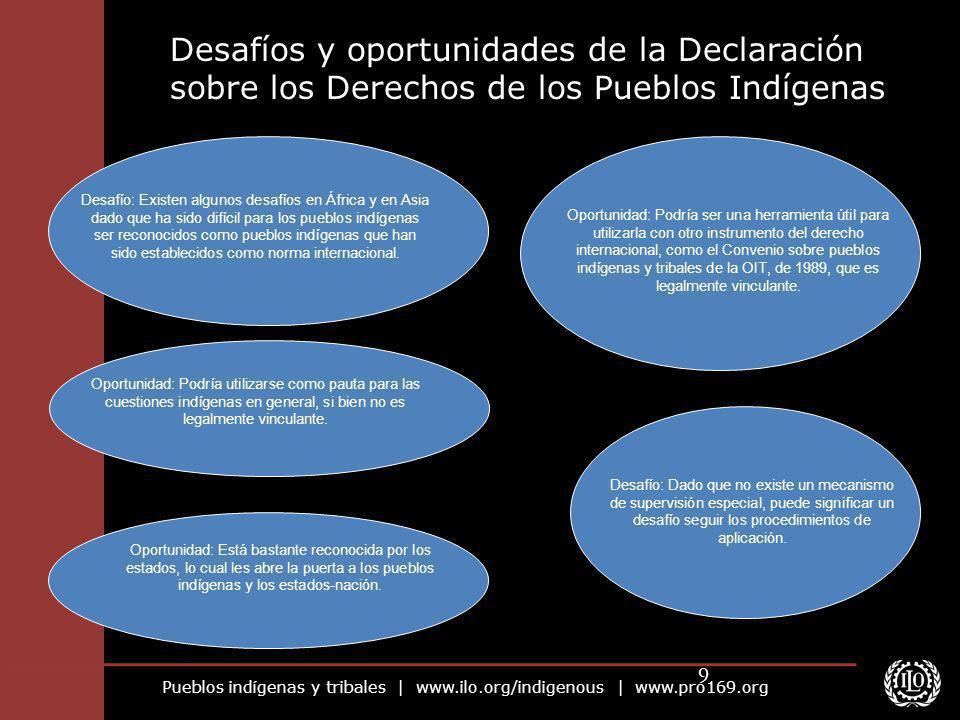Desafíos y oportunidades de la Declaración sobre los Derechos de los Pueblos Indígenas