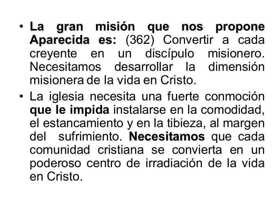 La gran misión que nos propone Aparecida es: (362) Convertir a cada creyente en un discípulo misionero. Necesitamos desarrollar la dimensión misionera de la vida en Cristo.