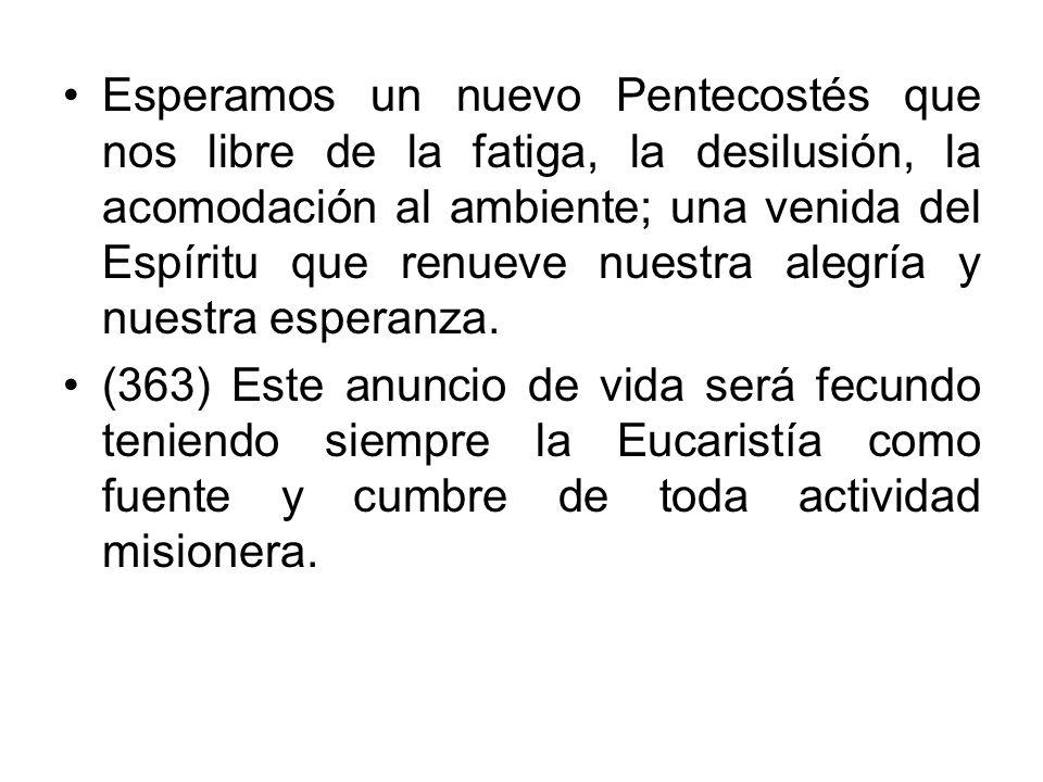 Esperamos un nuevo Pentecostés que nos libre de la fatiga, la desilusión, la acomodación al ambiente; una venida del Espíritu que renueve nuestra alegría y nuestra esperanza.