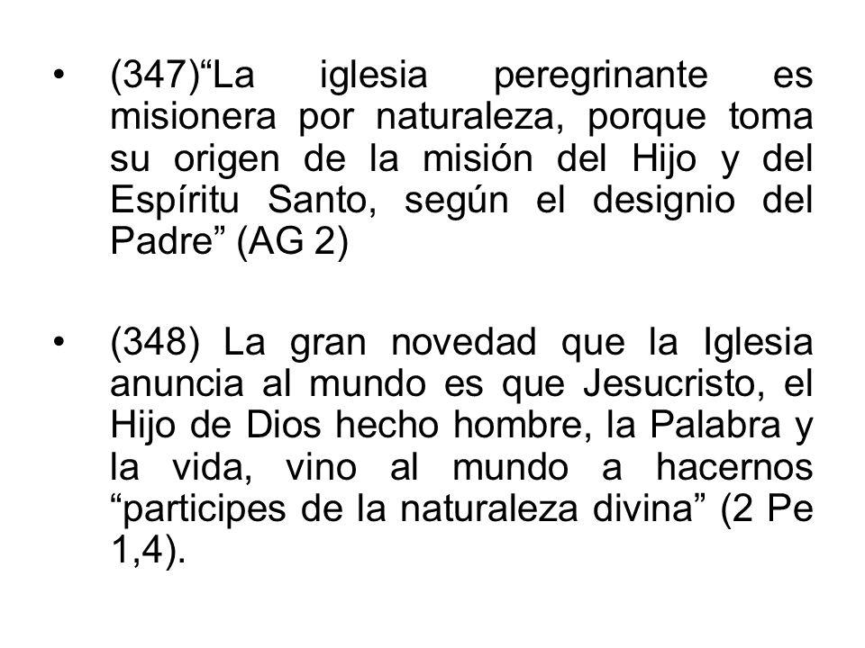 (347) La iglesia peregrinante es misionera por naturaleza, porque toma su origen de la misión del Hijo y del Espíritu Santo, según el designio del Padre (AG 2)