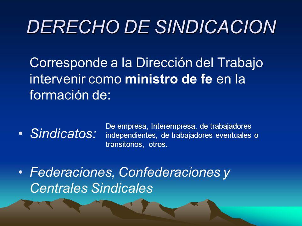 DERECHO DE SINDICACION
