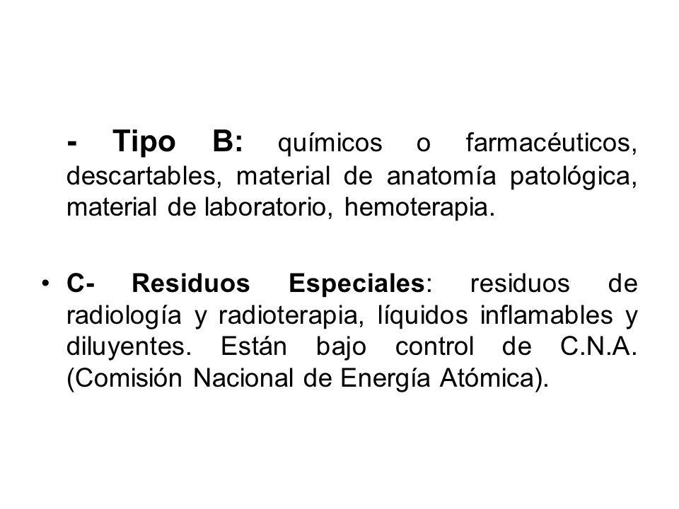 Lujo Basura Anatomía Disposición Composición - Anatomía de Las ...