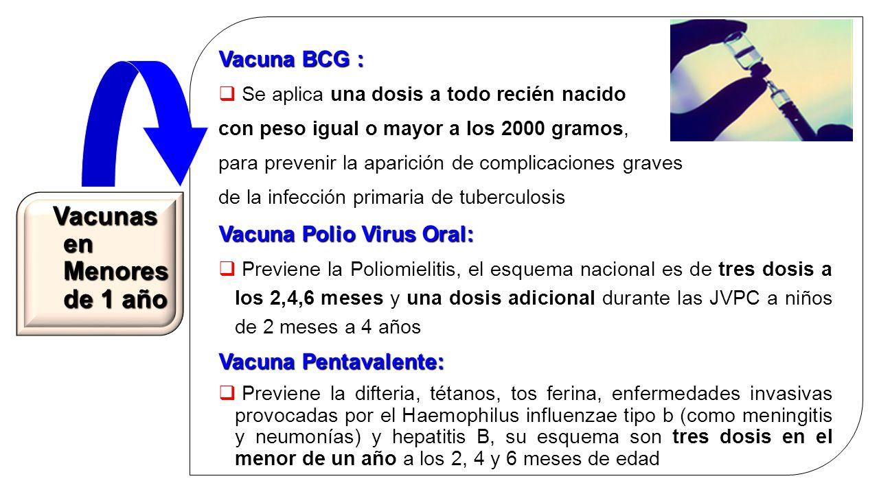 Esquema nacional de vacunaci n en nicaragua ppt video for En 4 meses termina el ano