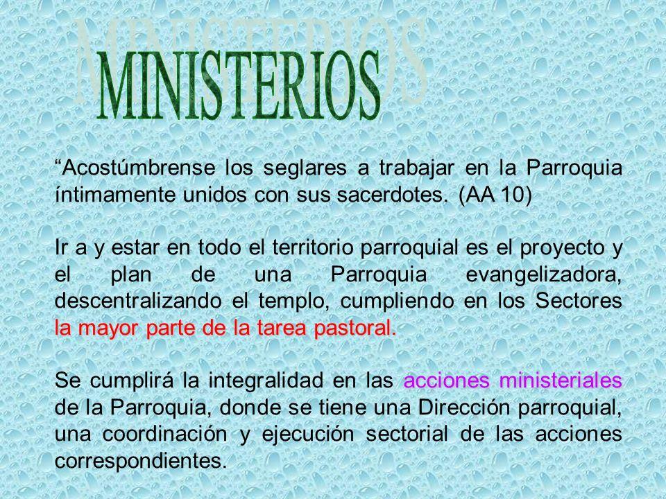 MINISTERIOS Acostúmbrense los seglares a trabajar en la Parroquia íntimamente unidos con sus sacerdotes. (AA 10)
