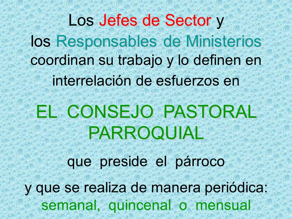 EL CONSEJO PASTORAL PARROQUIAL