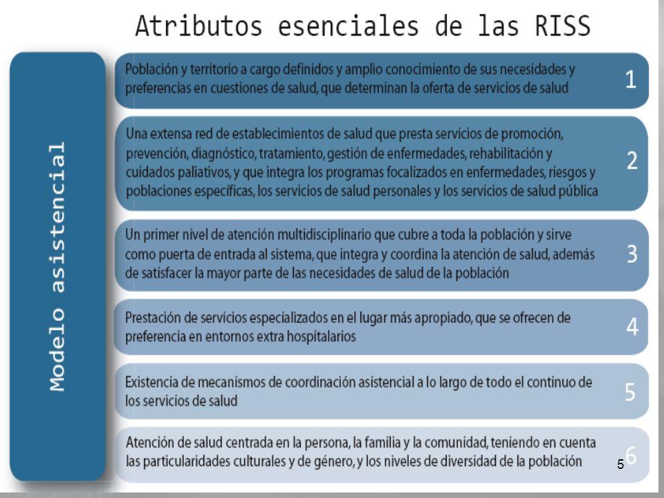 Las características de las RISS se pueden clasificar en cuatro grupos: