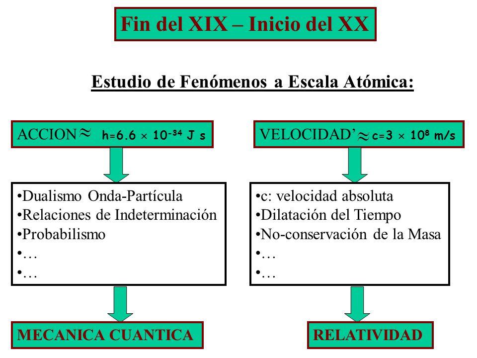 Fin del XIX – Inicio del XX