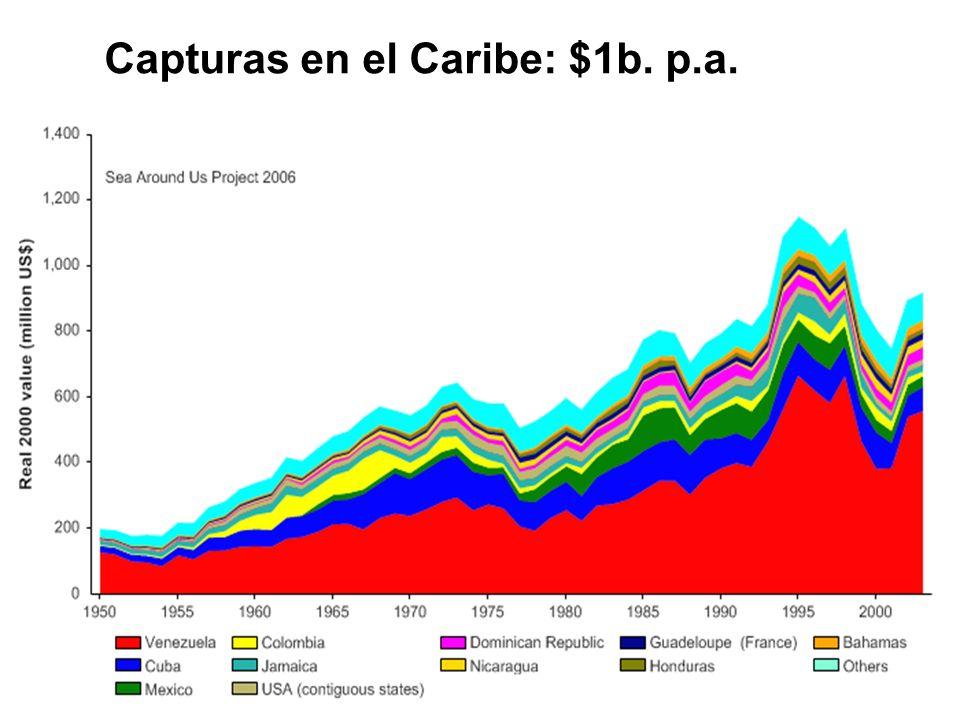 Capturas en el Caribe: $1b. p.a.
